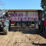 Plataforma logística de Tondela em funcionamento até dia 15 de dezembro