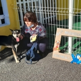 Município de Tondela assinala Dia Mundial do Animal