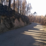 ICNF adia ações de estabilização de emergência pós incêndios